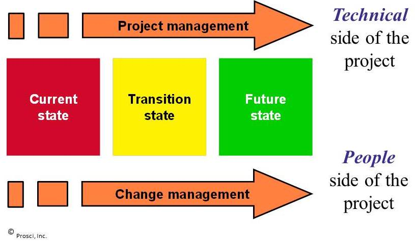 Adapt Change management and Project management